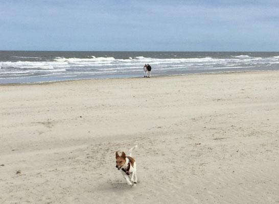 Flitzen am Strand von Langeoog
