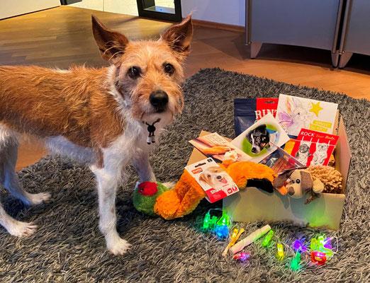 Minchen und ihre Geschenke!