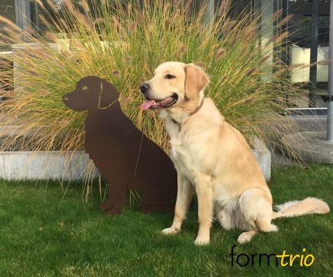 Oscar mit neuem Freund