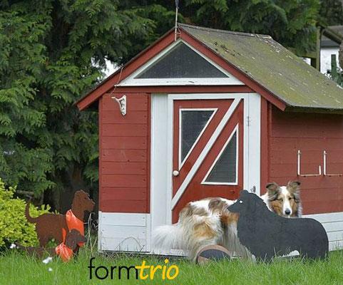 Amaretto mit seiner Stahlhund-Sammlung
