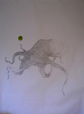 Octopus, 2012, graphite sur papier, 150 x 210 cm