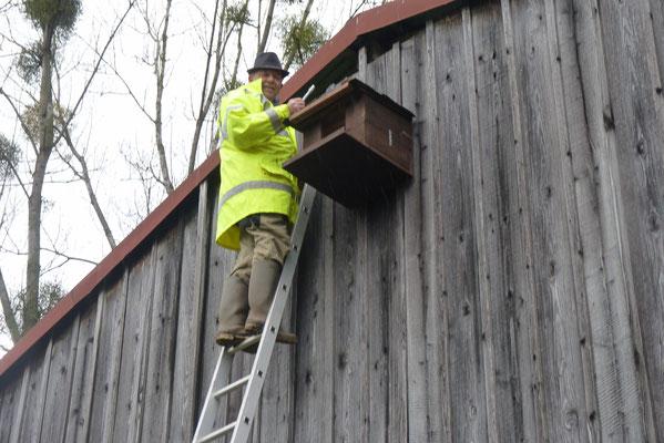 Werner Rosemann bei der Montage eines Turmfalkennistkastens an Scheune von Hugo Hillebrand in Bieber