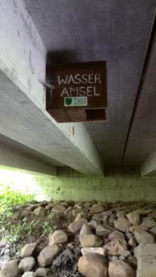 Nisthilfe unter Brücke bei Lanzingen