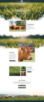 Bund Deutscher Limousin-Rinder Webseite