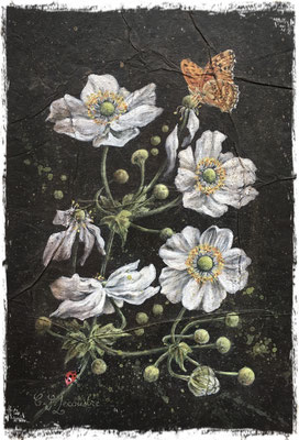 Anémones du Japon blanches et papillon, acrylique / acrylic