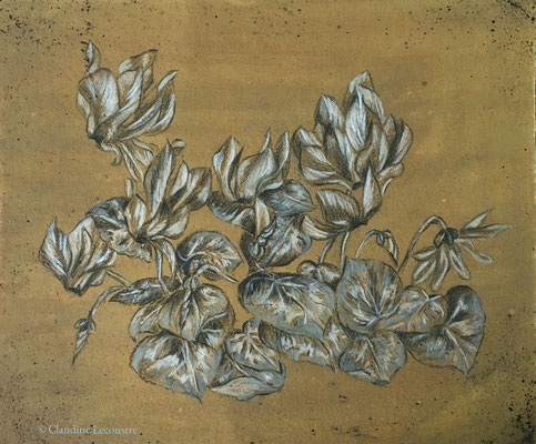 Cyclamens, trois crayons sur fond gouaché / three pencils on gouache background
