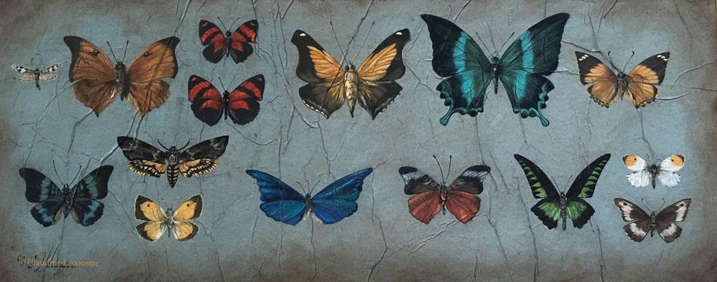 La collection, gouache, aquarelle, pastel sec / gouache, watercolor, dry pastel