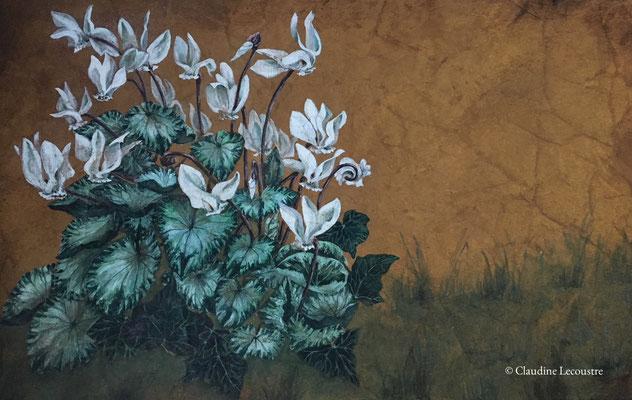 Cyclamens, gouache et aquarelle avec touches de pastel / gouache and watercolor with pastel touches