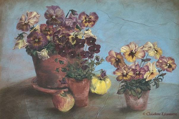 Pensées / Pansies, gouache et aquarelle / watercolor and gouache