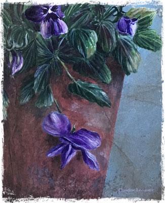 Viola Cornuta (détail), gouache, aquarelle, sepia et pastel sec / gouache, watercolor, sepia and dry pastel