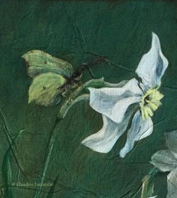 Narcisses et papillon citron (détail), acrylique / acrylic