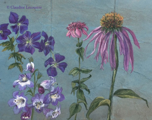 Un croquis de jardin / A garden sketch, aquarelle et gouache / watercolor and gouache