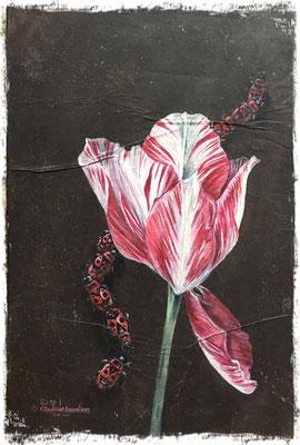 La tulipe et les gendarmes, acrylique / acrylic