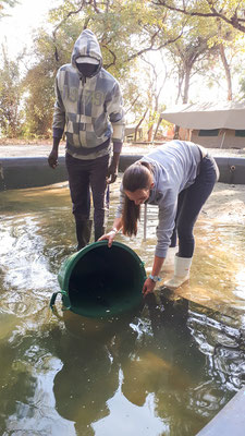 Hippo AquaCulture Farm - Training