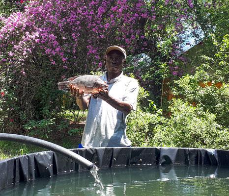 Hippo AquaCulture Farm