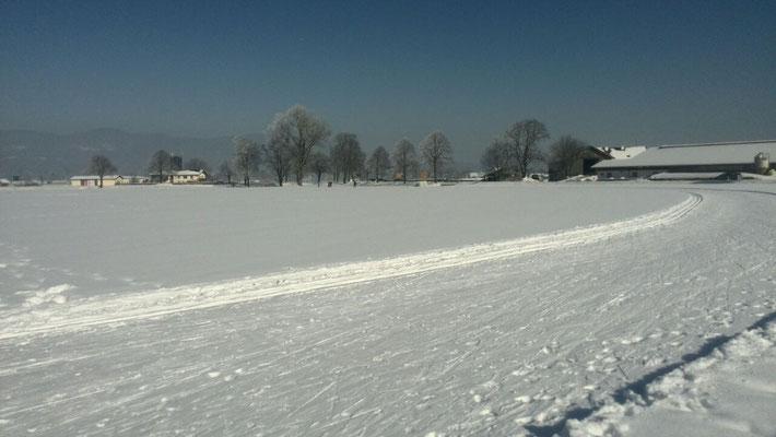 Langlaufen in Urwies