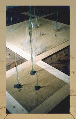 FIliformes en Jardinière d'Elevage Professionelle (Biennale des arts de Vigneux sur Seine)