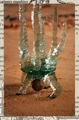 amorphoplante Excentrique n°1 (détail du pied avec sa mystérieuse concrétion de silice cristalisée)