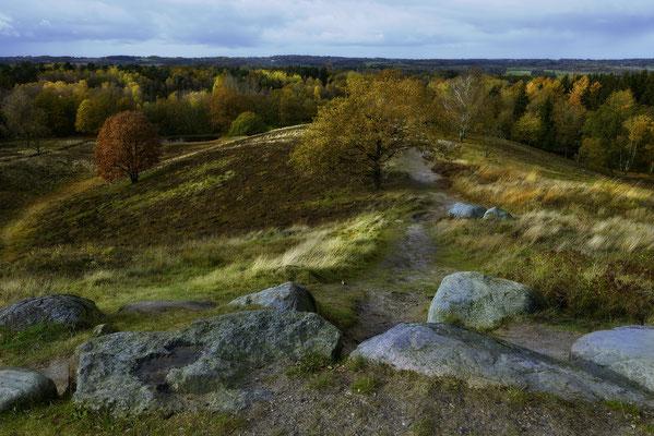 Boxberg, Aukrug, Schleswig-Holstein, Landschaftsfoto von Jürgen Müller