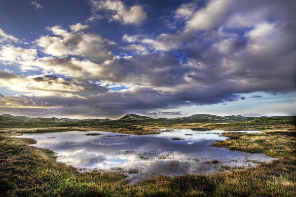 Lagune auf Sylt, Landschaftsfoto von Jürgen Müller