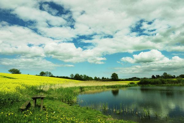 See mit Rapsfeld, Landschaftsfoto von Jürgen Müller