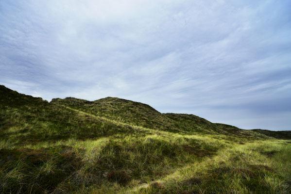 Sylt; Dünenweg, Landschaftsfoto von Jürgen Müller