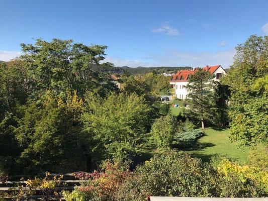 Der Blick über unseren Garten bis zum Husarentempel.