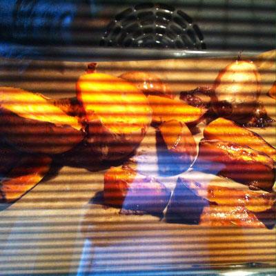 Süßkartoffeln und Kürbis schmoren im Backrohr
