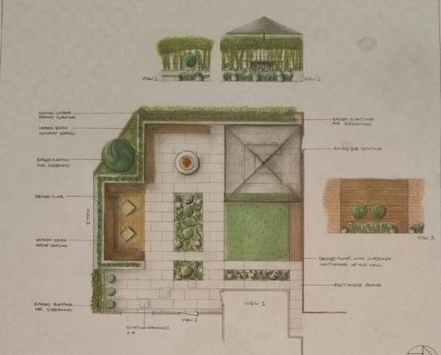 back garden hand drawn design