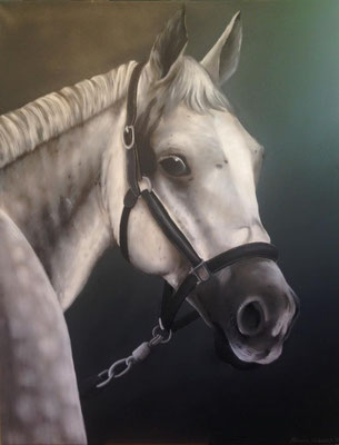 Pferd in Acryl und Airbrush auf Leinwand gemalt
