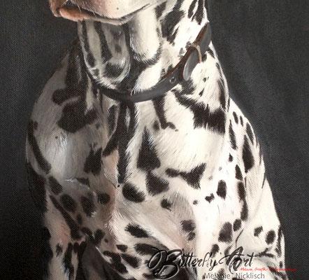 gemalter Dalmatiner in der Detailansicht