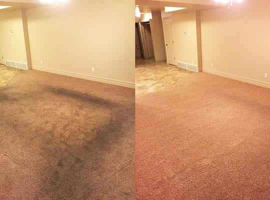 химчистка ковролина в на дому в Москве и Московской области: до и после