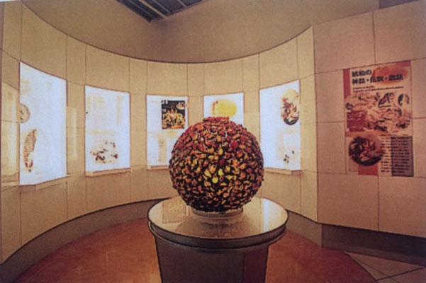 久慈琥珀博物館 琥珀ギャラリー