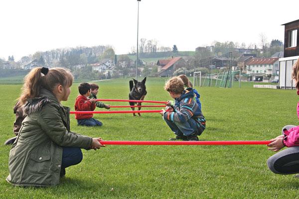 Hundeschule DreamTeam Schulbesuch
