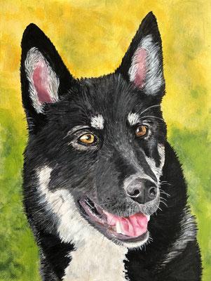 Hondenkop