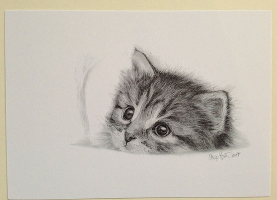 """Kitty"", 169x120mm oder in DINA 4 (10,-- €)"