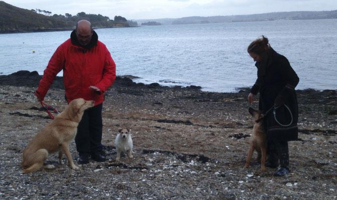 Pascal et Ruby (croisé) et Marion et sa chienne Joy ( Berger Allemand).