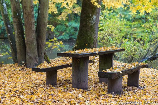 Herbst am Pfannwaldsee