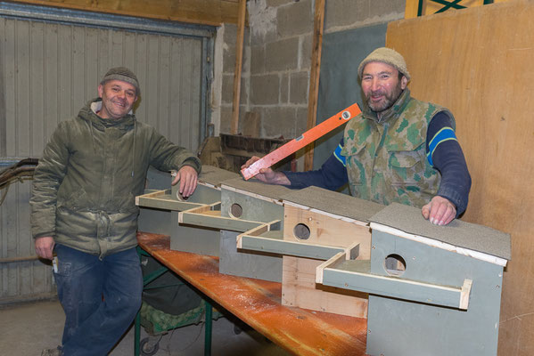 Bau von Steinkauznistkästen