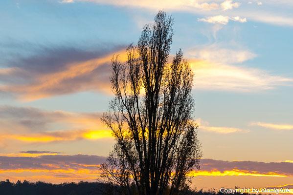 Sonnenuntergang in der badischen Toskana.