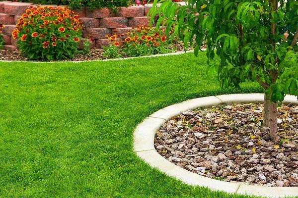 Gepflegter Rasen mit kreisförmigen Randsteinen