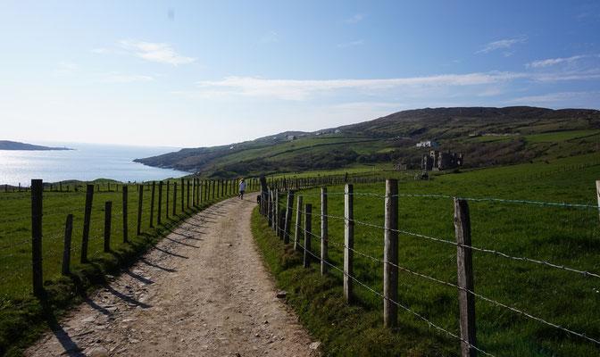 Hillside Lodge - Clifden, Connemara, Galway County, Ireland - the road