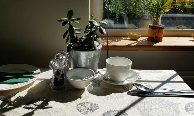 Hillside Lodge - Clifden, Connemara, Galway County, Ireland - breakfast table with sun