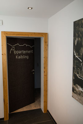 Eingangstür Appartement Kaibling