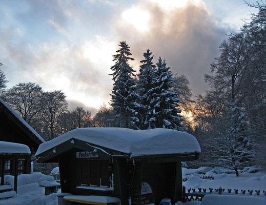 Fuchstanz, 18.Dezember 2010