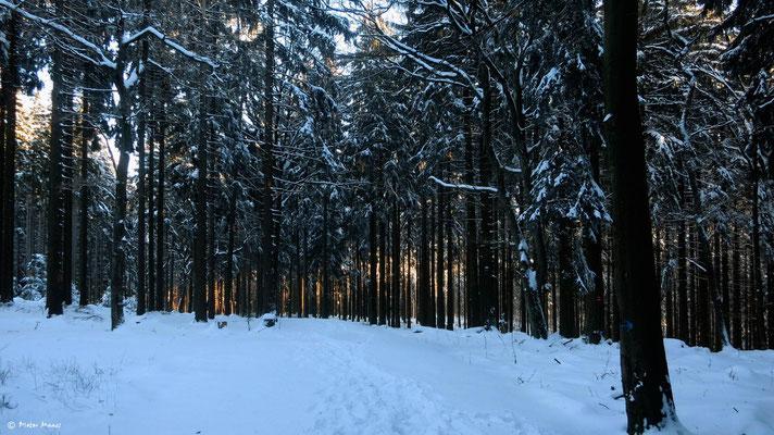 Richtung Fuchstanz, 28.Dezember 2014