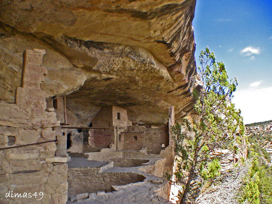 Felsbehausungen (Cliff Dwellings) ca. 800 Jahre alt der Anasazi Indianer