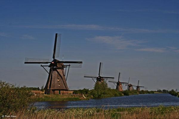 Die Mühlen von Kinderdijk, Mai 2010