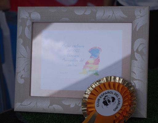 Trofeo de Mejor Cachorro