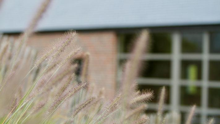 La ferme Saint Jean, un écrin niché au coeur d'un village champêtre